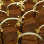 Beim 'Petit Salon du Chocolat' geben Chocolatiers aus ganz Europa ihr Bestes für schokoladigen Genuss